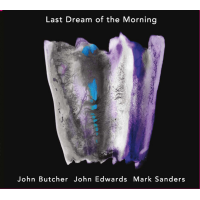 John Butcher/John Edwards/Mark Sanders: Last Dream of the Morning