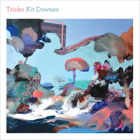 Kit Downes: Tricko