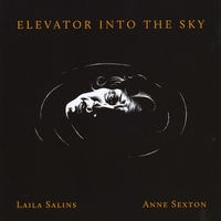 "Read ""Elevator Into The Sky"" reviewed by C. Michael Bailey"