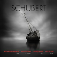 "Read ""Schubert"" reviewed by C. Michael Bailey"