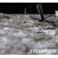 "Read ""Feldspath"" reviewed by"