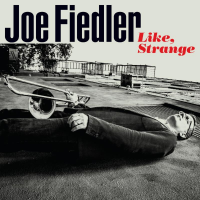 Joe Fiedler: Like, Strange