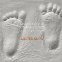 "Read ""Melted Snow"" reviewed by John Sharpe"