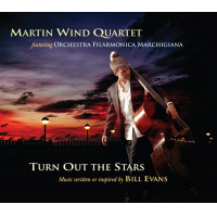 Album Turn Out the Stars by Martin Wind