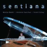 "Read ""Sentiana"" reviewed by Dan Bilawsky"