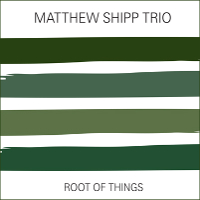 Matthew Shipp Trio: Root Of Things