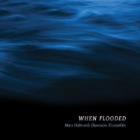Matt Holman's Diversion Ensemble: When Flooded