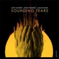 Album Sounding Tears by Mat Maneri