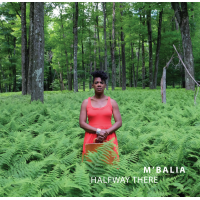 "Read ""Halfway There"" reviewed by C. Michael Bailey"