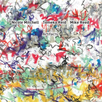 Album Artifacts by Nicole Mitchell