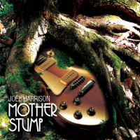 Album Mother Stump by Joel Harrison