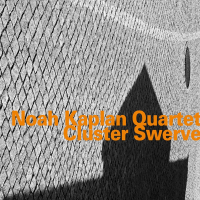 "Read ""Cluster Swerve"" reviewed by Giuseppe Segala"