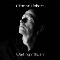 Ottmar Liebert: Waiting n Swan