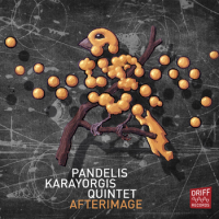 Afterimage by Pandelis Karayorgis