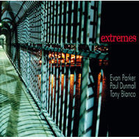 "Read ""Extremes"" reviewed by Glenn Astarita"