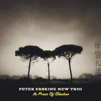 Peter Erskine New Trio: In Praise of Shadows