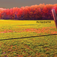 "Read ""Plymouth"" reviewed by Claudio Bonomi"