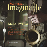 More Than Imaginable by Ricky Sweum