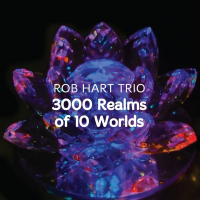 Rob Hart Trio: 3000 Realms Of 10 Words
