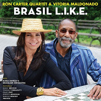 "Read ""Brasil L.I.K.E"" reviewed by"