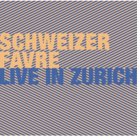 Album Live in Zurich by Irene Schweizer