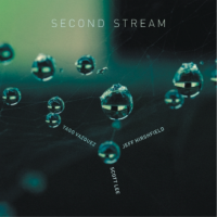 "Read ""Second Stream"" reviewed by Troy Dostert"