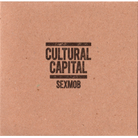 "Read ""Cultural Capital"" reviewed by Glenn Astarita"