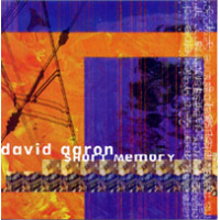 Album Short Memory by David Aaron
