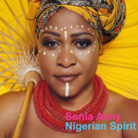 "Read ""Nigerian Spirit"""