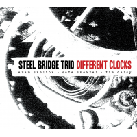 Steel Bridge Trio: Different Clocks