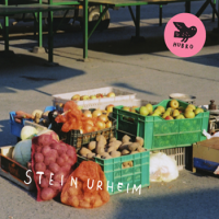 "Read ""Stein Urheim: Stein Urheim"" reviewed by"