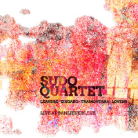 Sudo Quartet: Live at Banlieue Bleue
