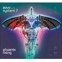 "Read ""Phoenix Rising"" reviewed by Glenn Astarita"