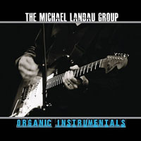The Michael Landau Group: Organic Instrumentals