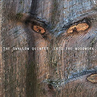 Album Into the Woodwork by Steve Swallow