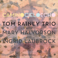 Camino Cielo Echo by Tom Rainey