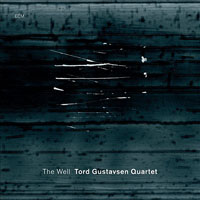 Album Tord Gustavsen Quartet: The Well by Tord Gustavsen