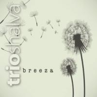 Trio Shalva: Breeza