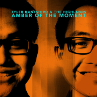 "Read ""Amber of the Moment"" reviewed by Dave Wayne"