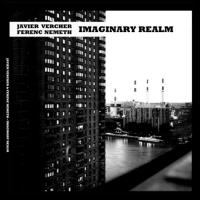 Album Imaginary Realm by Javier Vercher