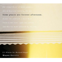 Album Some Places Are Forever Afternoon (11 Places For Richard Hugo) by Wayne Horvitz