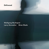 "Read ""Wolfgang Muthspiel: Driftwood"" reviewed by John Kelman"