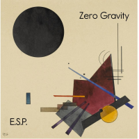 Album Zero Gravity by Matthew F. Vacanti
