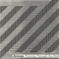 Album Passing Through The Wall by Zevious
