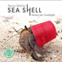 "Read ""Sea Shell"""