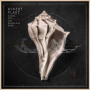Robert Plant: lullaby and …The Ceaseless Roar