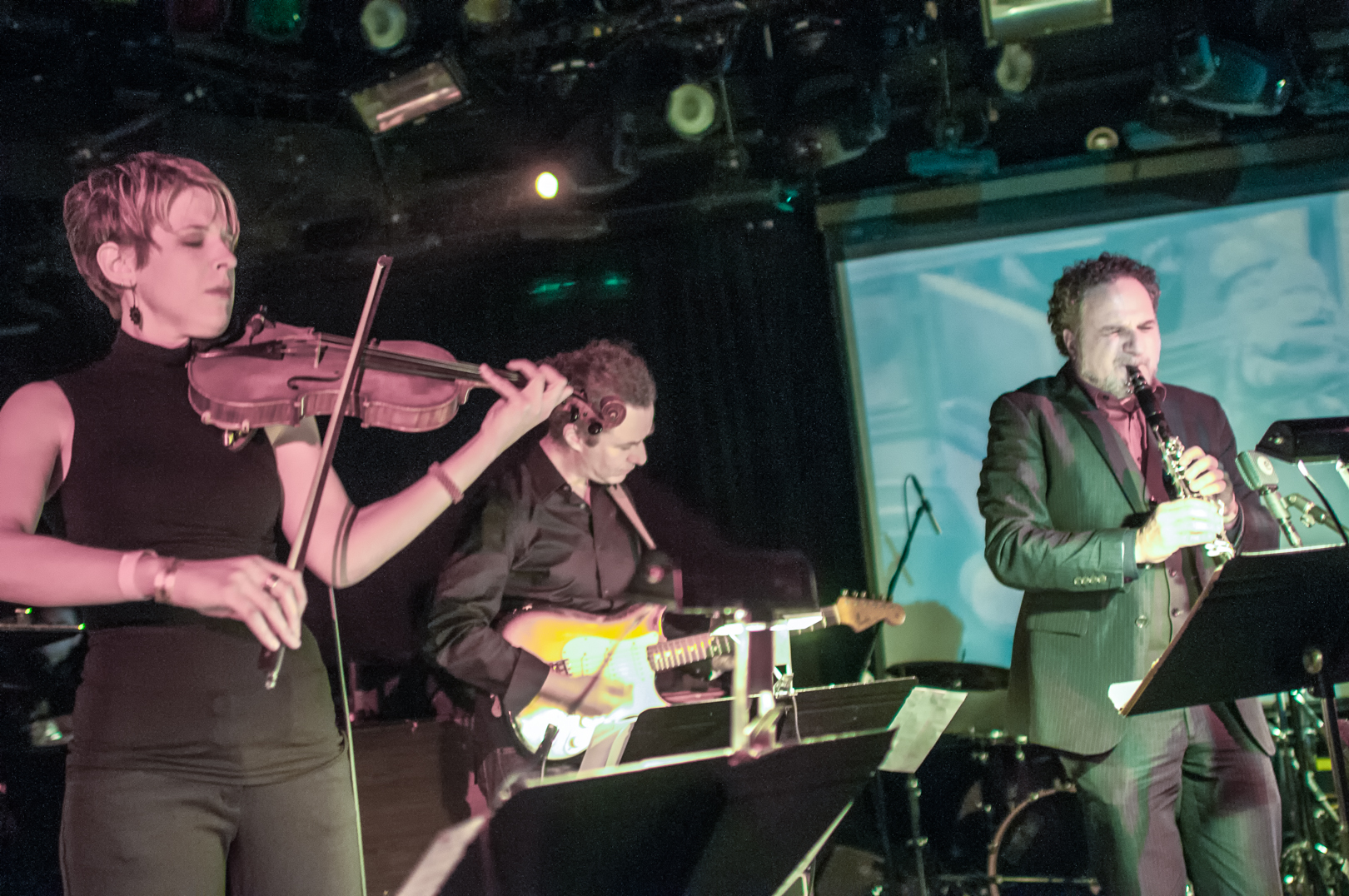 Sara Caswell, Adam Rogers and David Krakauer and the Big Pictureat le Poisson Rouge at Winter Jazzfest 2013