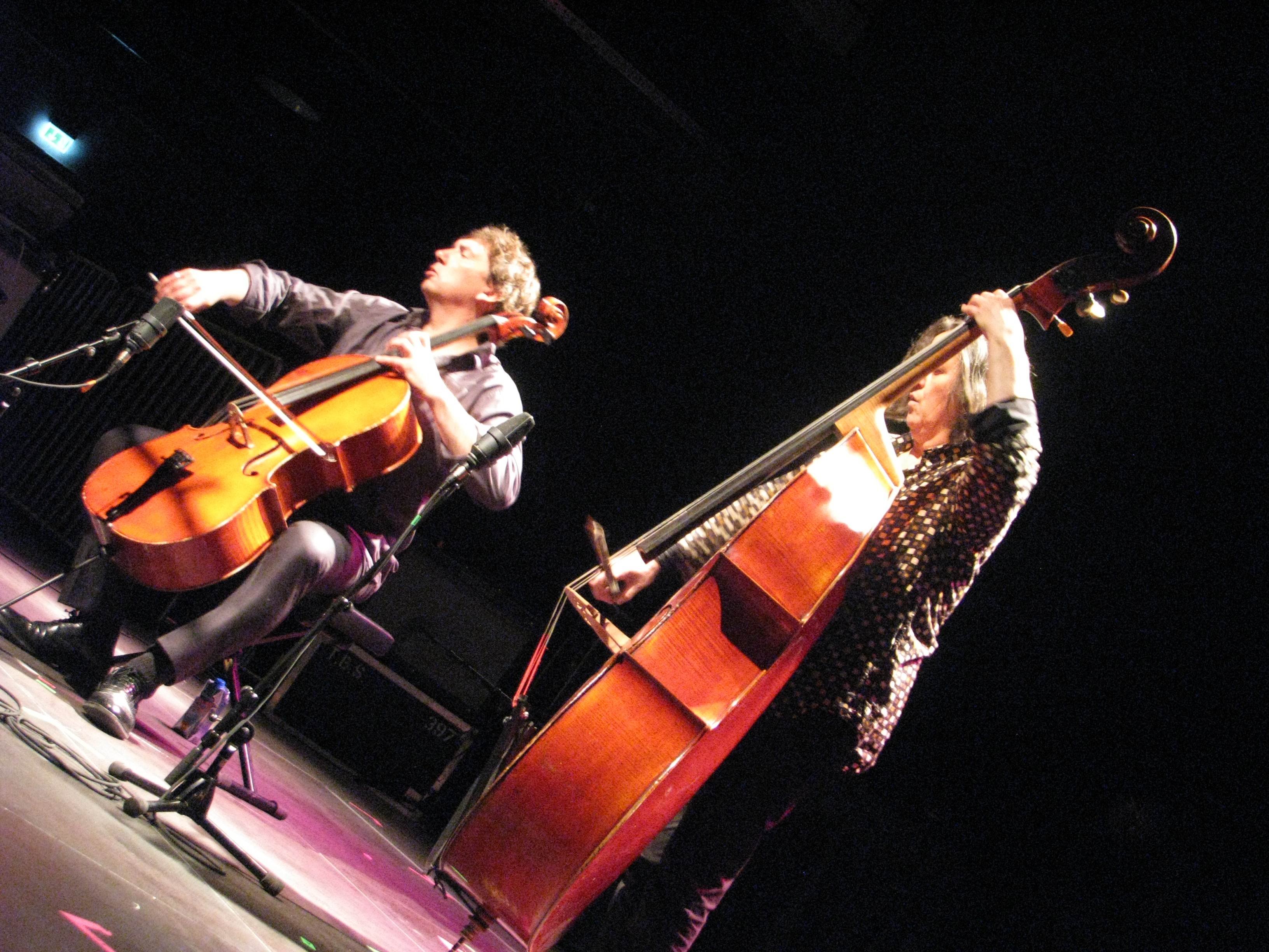 Vincent courtois + joelle léandre jazzdor berlin 2013