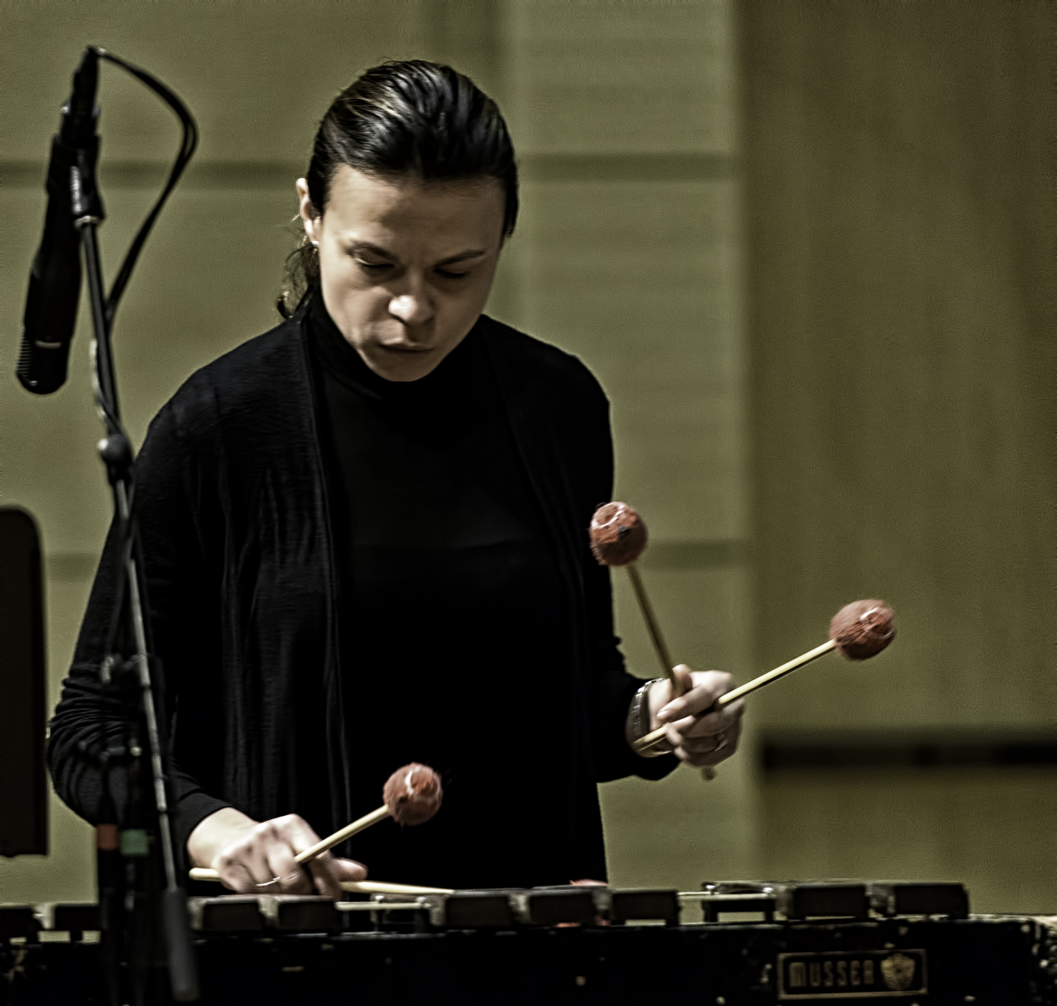 Patricia Brennan with Michael Formanek's Ensemble Kolossus At The NYC Winter Jazzfest 2016