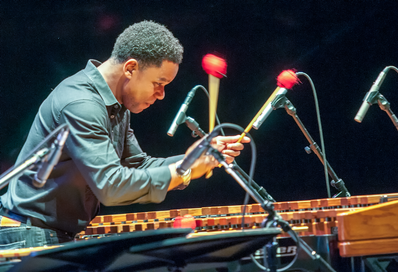 Stefon harris with the cyrus chestnut trio at the tempe arts center